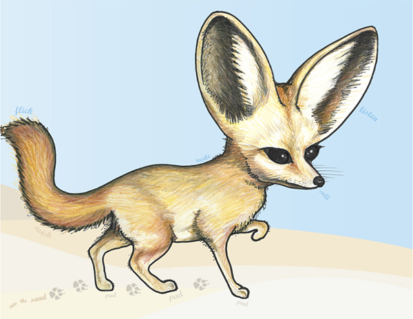 Fennec Fox by Kara Fuhlbrugge